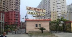 Bengal Shelter Akankha-4
