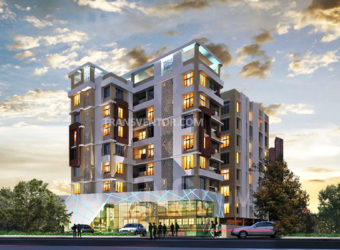 Adya Exotica Height
