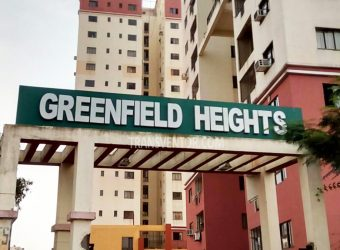 Bengal Greenfield Heights+++++++++