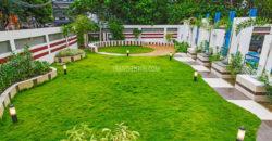 Mandevilla Garden-2