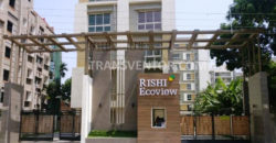 Rishi Ecoview