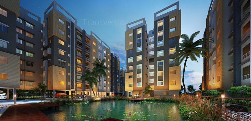 Marigold City-3